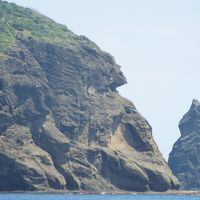 2016年3月 小笠原諸島 その3 出航前日 ホエールウォッチング+南島ツアーのホエールウォッチングと南島を除いた部分