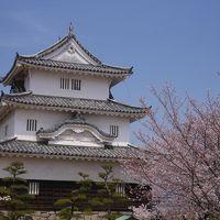 青春18きっぷで行くうどん県 丸亀城とこんぴらさん