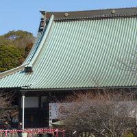 東海道をのんびり歩く旅5 戸塚宿〜平塚宿