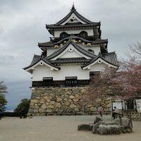 新東名を通り彦根城へ。