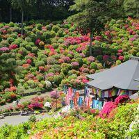 駅からハイキング 春の青梅 霞丘陵「華回廊」ハイキングコース