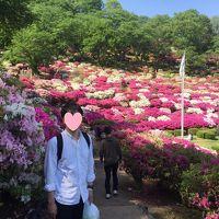 ちょこっと弾丸・福井への旅【2日目/西山公園〜気比の松原】