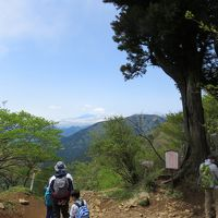 2016GW「丹沢・大山フリーパスで行く大山ハイキング」(下り)