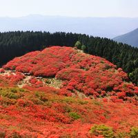 一目百万本のツツジが咲く葛城山に登る