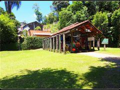 美しい森:Bosque Zanielli自然公園(Unilivre/クリチバ/ブラジル)*1*