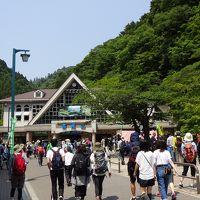 高尾山で森林浴を楽しみました。