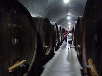 中国(4)煙台へワイン求めに来たはずが