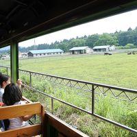 初夏のわたらせ渓谷鐵道と風っこ日光号
