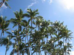 ハワイ島 観光しながらコナからヒロへ北回り移動�(コナ→ヒロ→カラパナ)(2016.1)