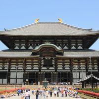 うるわしの奈良 ひとり旅 (4)圧巻の東大寺