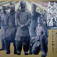 国立国際美術館「始皇帝と大兵馬俑展」に行ってきた!