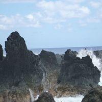 ハワイ島 ラウパホエホエという名前が気になって (ヒロ⇔ワイピオ)(2015.4)