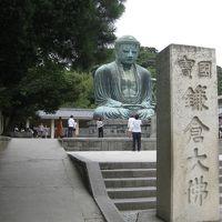鎌倉・長谷の大佛さんにお参り。