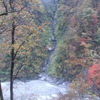 北陸新幹線と富山地方鉄道で魚津 宇奈月 富山を旅して