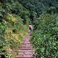 関西随一の人気の渓谷沿い鉄道廃線跡をJRが整備