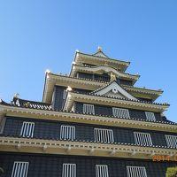 日本100名城巡り 岡山を起点に中国四国7城を巡る旅 1 岡山編