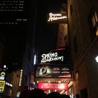NYひとり旅 2015 2日目