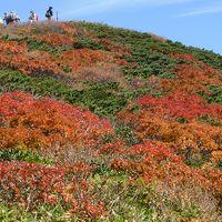紅葉真っ盛りの栗駒山登山と須川高原温泉自炊湯治の旅3泊4日 その2須川コース登山編