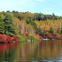 錦秋の白駒の池