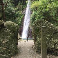 初秋の心地よい風を受けて紅葉前の滝へ 岐阜養老 国内出張編