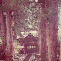 1976年(昭和51年)GW 一人旅にのめり込む原点の北陸地方(福井・石川)への旅8日間(1)福井(越前海岸 福井市内 永平寺)