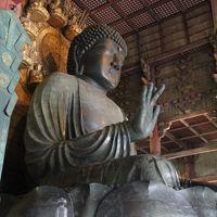 こんな暑い夏に関西方面の世界遺産を巡る旅☆3日目奈良・宇治・京都☆
