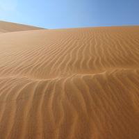 ナミブ砂漠周辺