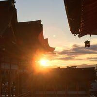 1歳児とことりっぷ〜醍醐寺と伏見稲荷〜
