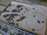 タヒチでCカード取得 【その14】 ランギロアで黒真珠の養殖見学&ショッピング!