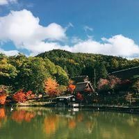 美しい紅葉を期待して1泊2日の女子一人旅☆ Vol. 1 ☆一年以内に再訪出来た飛騨高山の紅葉を堪能!