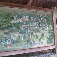 恐竜を見に福井へ、2泊3日旅行�