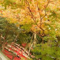 まちのりで巡る紅葉とグルメの金沢(1日目)