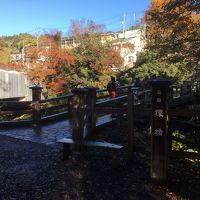 2016年11月 猿橋&大月に紅葉を見に行く