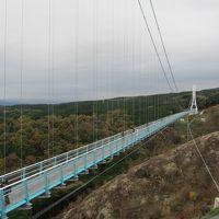 山中城から三島大吊橋(MISHIMA SKYWALK)へ