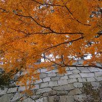 晩秋の盛岡2016 � 不来方城の紅葉