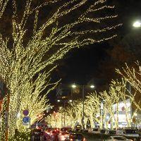 2016年 イルミネーション ☆☆☆表参道の街を暖かく照らすイルミネーション!!☆☆☆