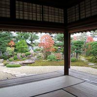 萩城下町・菊屋家住宅秋の庭園特別公開
