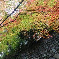 2016年11月晩秋、初めての深大寺。