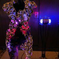 【GINZA ILLUMINATION 2016】【銀座三越竹あかりツリー】【東急プラザ銀座】【東京クリスマスマーケット2016】【ライティング・オブジェ2016】【WHITE KITTE 2016】【東京駅グランルーフ Light on Train】
