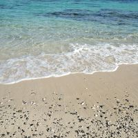 初の奄美大島:オーベルジュとバニラエア(4日目)