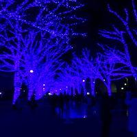 TeamH Party 参加と東京散策