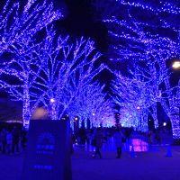 表参道イルミネーション&青の洞窟SHIBUYA