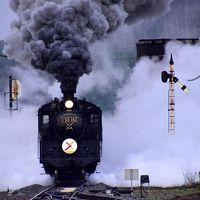 蒸気機関車C56-160号機 SLクリスマス号に乗って