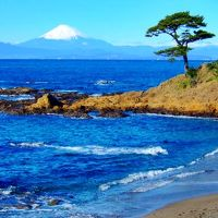 冬晴れの日に 富士山追いかけ 三浦半島西海岸へ