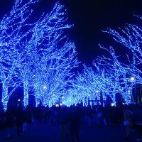 渋谷に復活! 青の洞窟