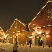 今年の旅の締めくくりは函館クリスマスファンタジー