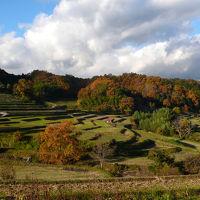 奈良を歩く -2016秋- 一日いっぱい飛鳥