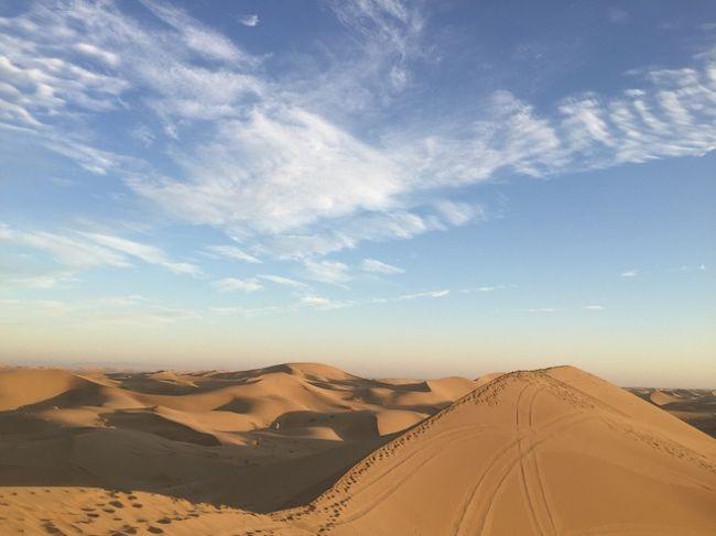 ルート砂漠の画像 p1_8
