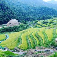 小豆島でキャンプと海とちょっとアートな旅(瀬戸内国際芸術祭2016)
