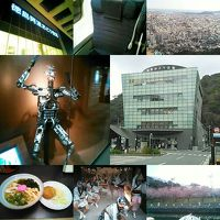 東京会議後に徳島に寄り道して帰宅(踊る阿呆に見る阿呆!同じ阿呆なら踊らにゃソンソン)